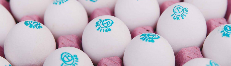 Box of St Ewe - free-range eggs